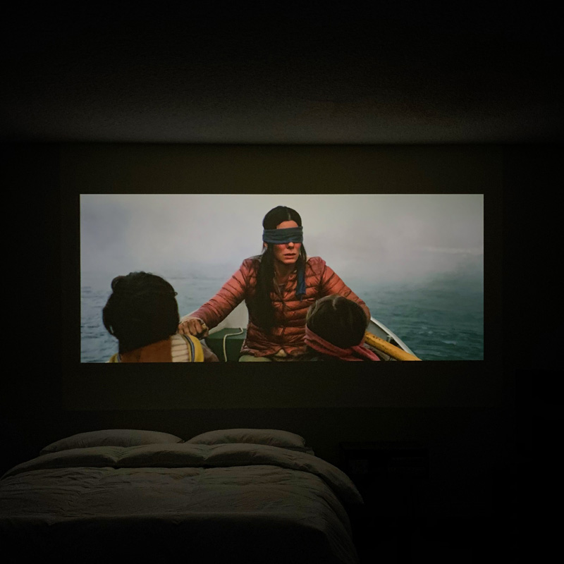 bird box projector