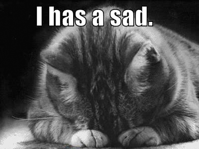 i has a sad lolcat