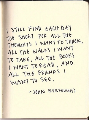 john burroughs quote