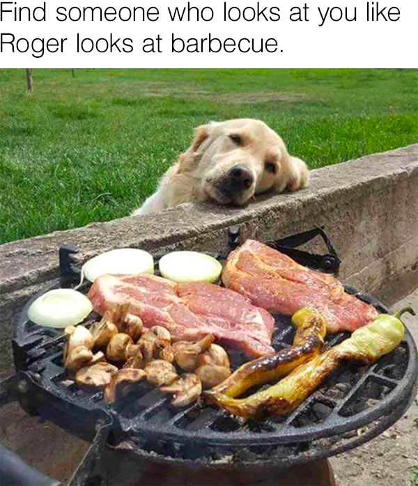 find someone who looks at you like roger looks at bbq