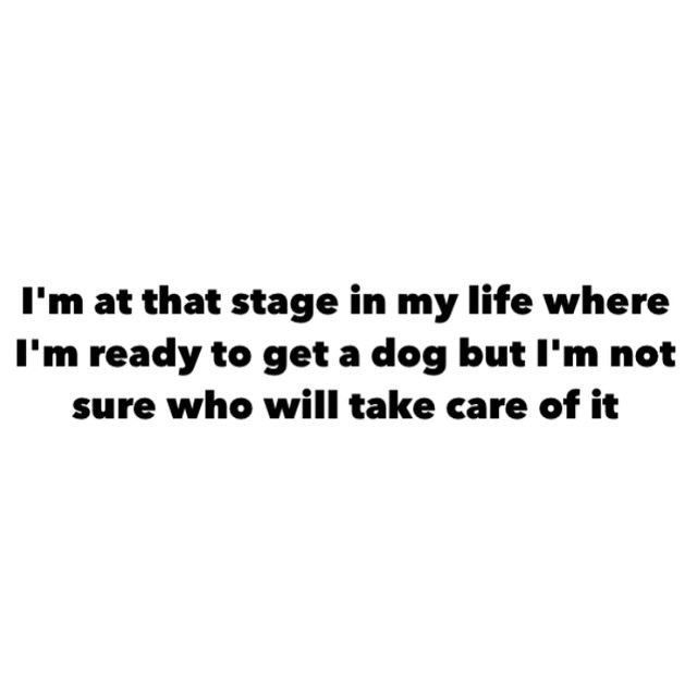 i'm at that stage in my life where i'm ready to get a dog but i'm not sure who will take care of it
